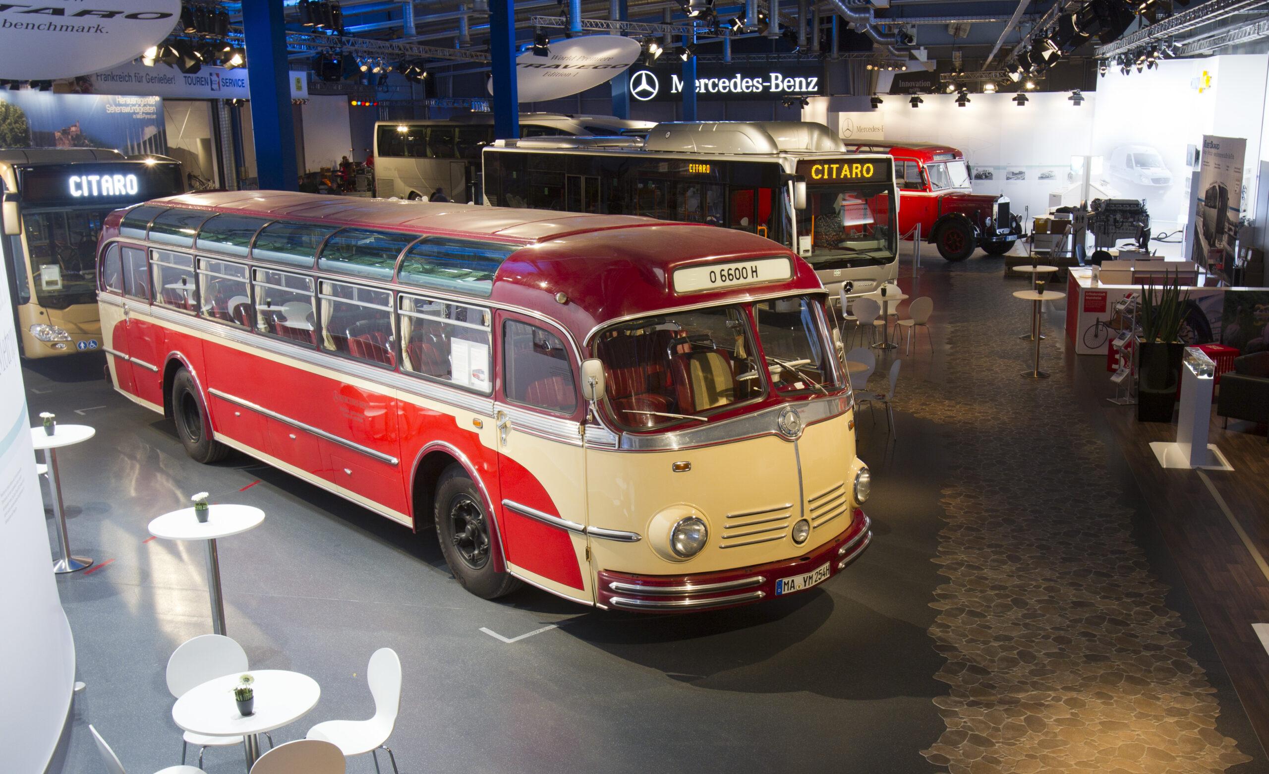 Die Mercedes-Benz O 6600 H + T Omnibusse von 1951